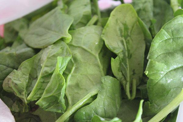 Fresh, local spinach
