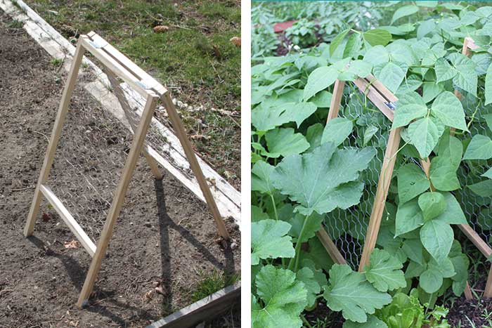 diy hinged bean trellis